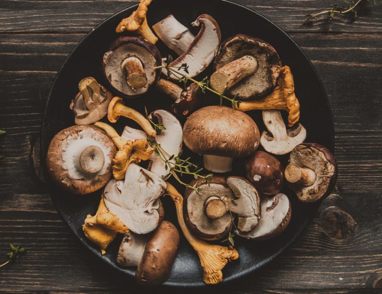 Le sei varietà di funghi più usate in cucina