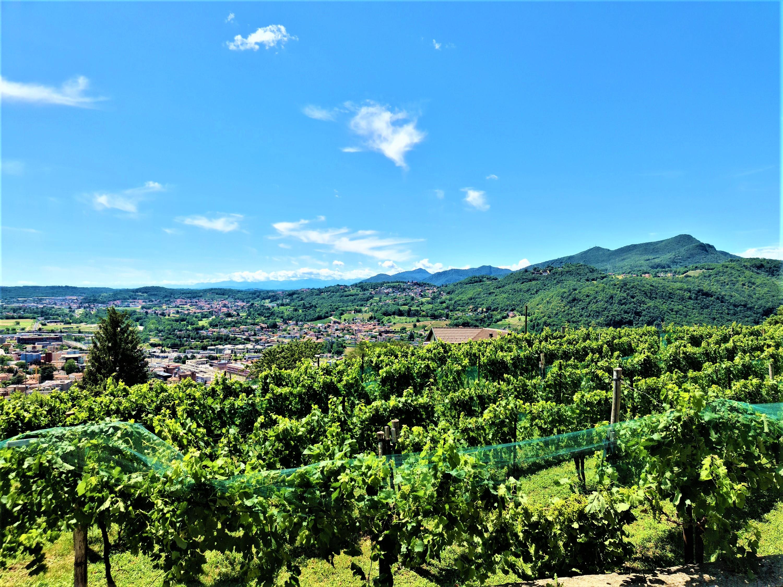 Villa unifamiliare con ampio giardino e vista panoramica sulle colline in vendita a Salorino